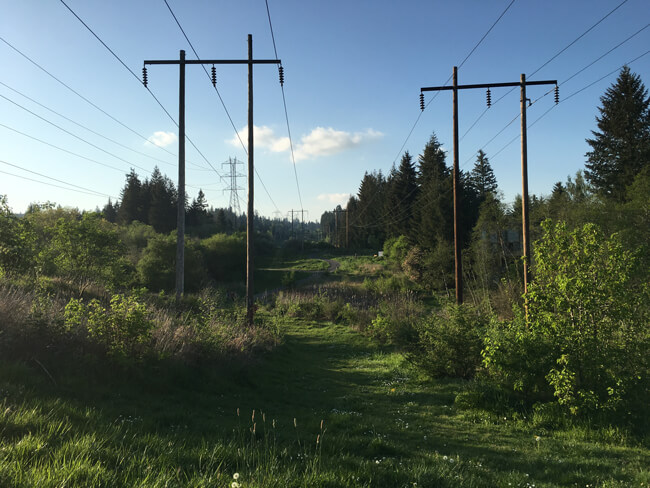 Findley Heights Attractions - Tualatin Hills Parks, OR